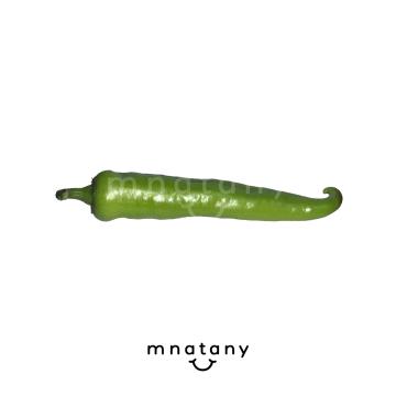 Hot Green Pepper