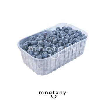 Blueberry  500g.