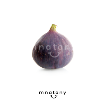Fig Purple